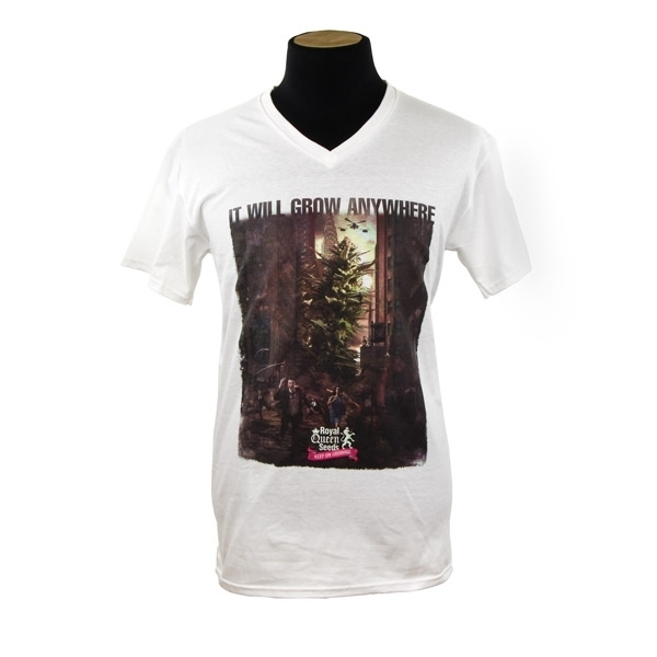 T-shirt City della Royal Queen Seeds