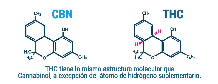 CBN Composición molecular