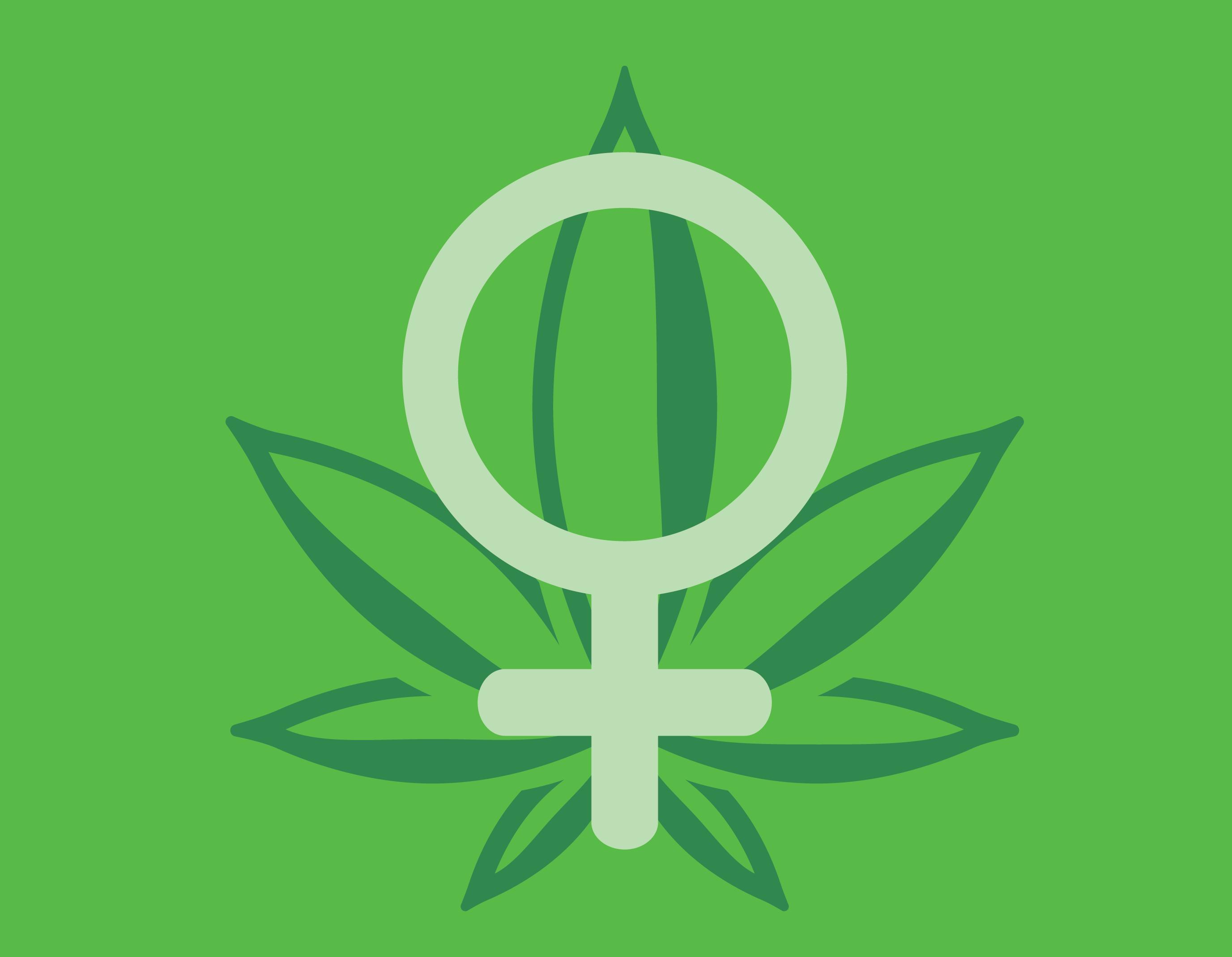 donna cannabis marijuana consumatore ha un sapore preferenze reale semi regina preferita