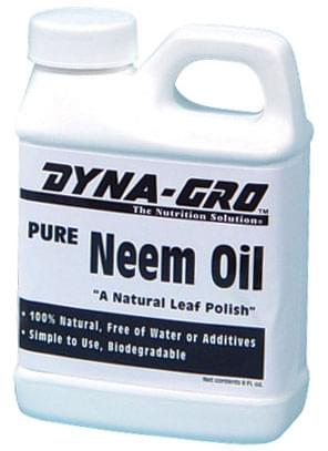 l'olio di Neem cannabis