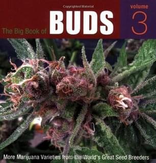 Grande Libro delle Cime: Varietà di Marijuana dalle Più Grandi Banche del Seme del Mondo