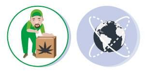 REGOLAZIONE cannabis