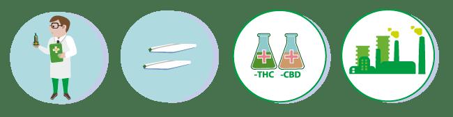 L'Australia Legalizza la  Marijuana