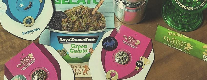 Semi di Cannabis e Merchandise Gratis