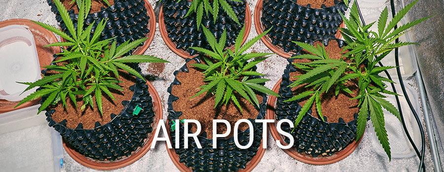 Air Pots Coltivazione Di Cannabis