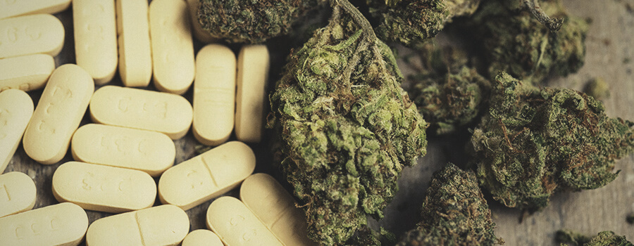 Ibuprofeno Vs Cannabis Per Combattere L'Infiammazione