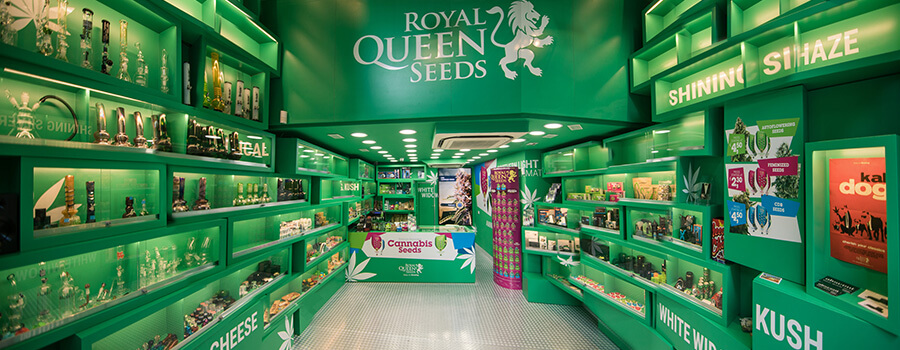 Negozio di semi di cannabis di semi della Royal Queen Seeds Barcellona