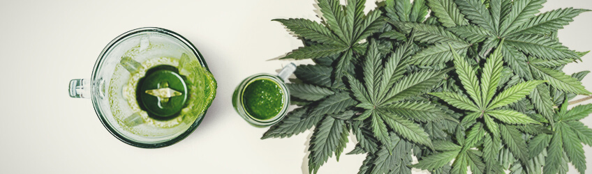 Juicing Cannabis