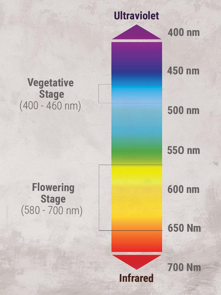 quali sono i vantaggi e gli svantaggi della datazione relativa e radiometrica
