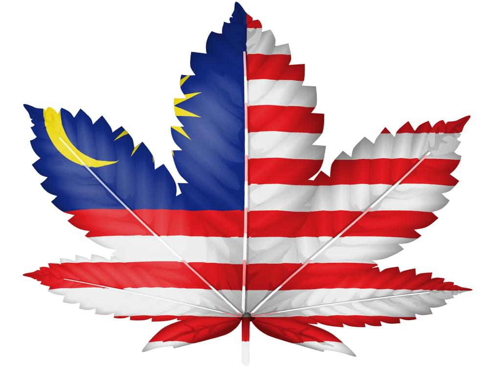 Cannabis in Malesia