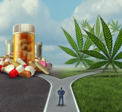 cannabis di emicrania mal di testa trattamento pillola