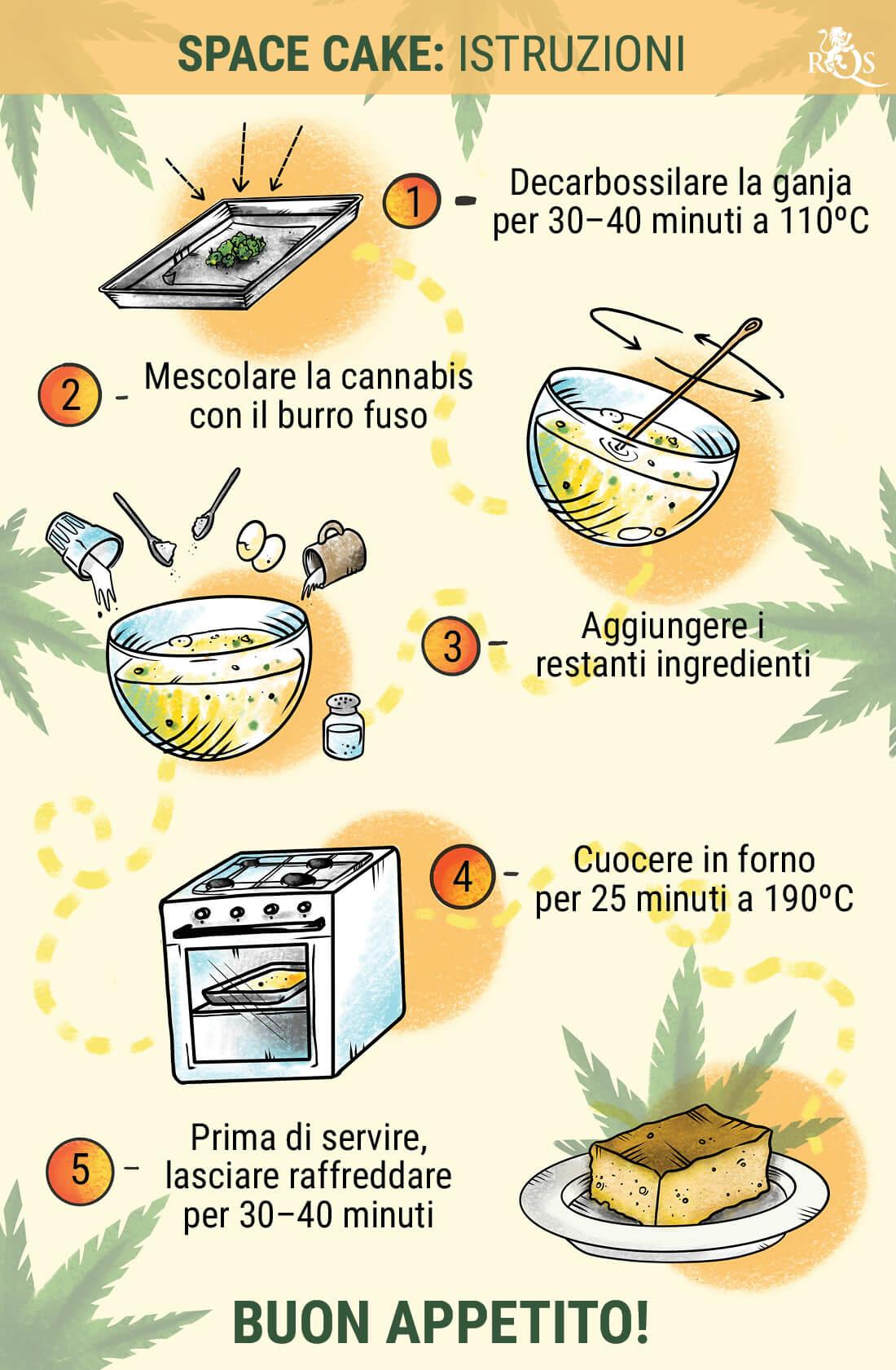Ricetta Biscotti Hashish.Come Preparare La Migliore Space Cake La Piu Buona Ricetta Alla Cannabis Rqs Blog