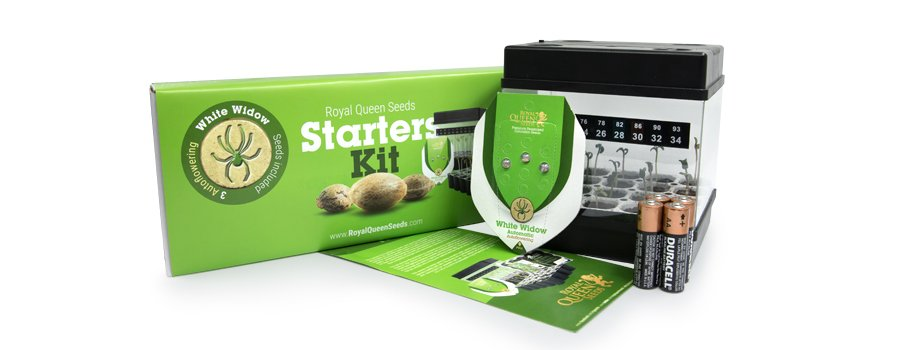 Starter Kit Autofiorenti Royal Queen Seeds