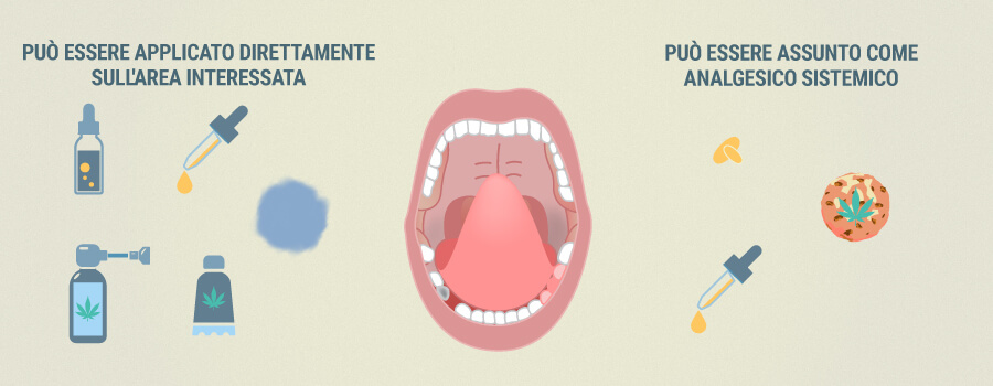 In Che Modo Il Cbd Può Alleviare Il Mal Di Denti