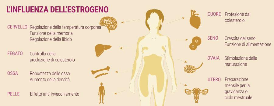 L'influenza di estrogeni e cannabis