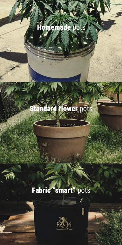 Types of Pots for Growing Cannabis