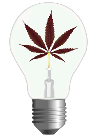 Luci Led Coltivazione Indoor Cannabis