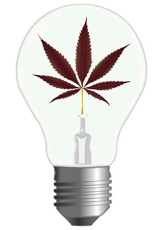 Luci Led Coltivazione Indoor Cannabis