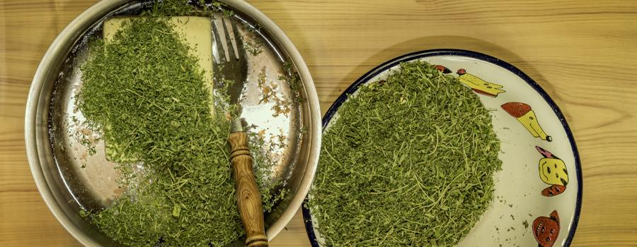 Cannabutter ricetta cannabis tea