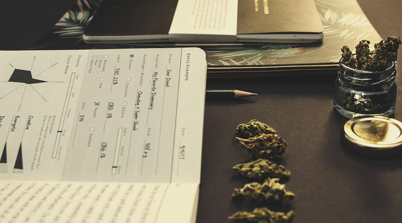 La marijuana ti fa perdere il controllo? O sei consapevole di ciò che ti sta accadendo intorno?