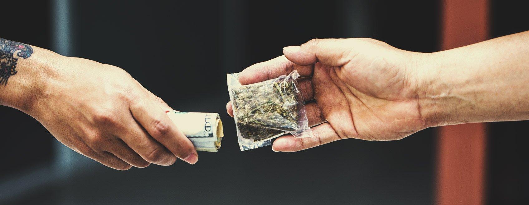Le persone si preoccupano della provenienza della cannabis che consumano?