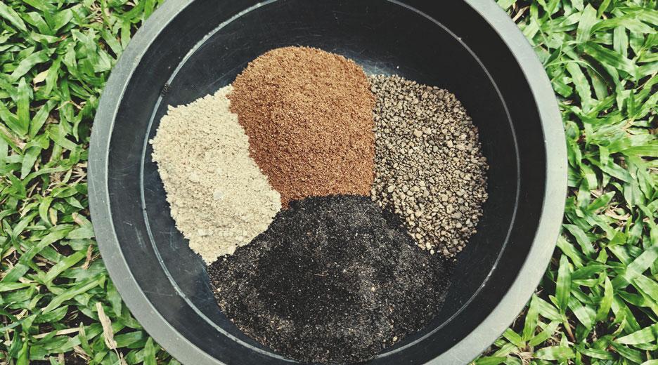 Come parte di una miscela di terriccio organico con farina di ossa e guano di polli