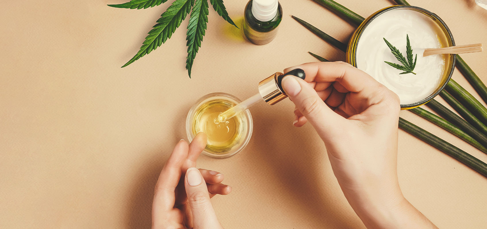 Come fare dell'olio di CBD con le varietà di cannabis terapeutica