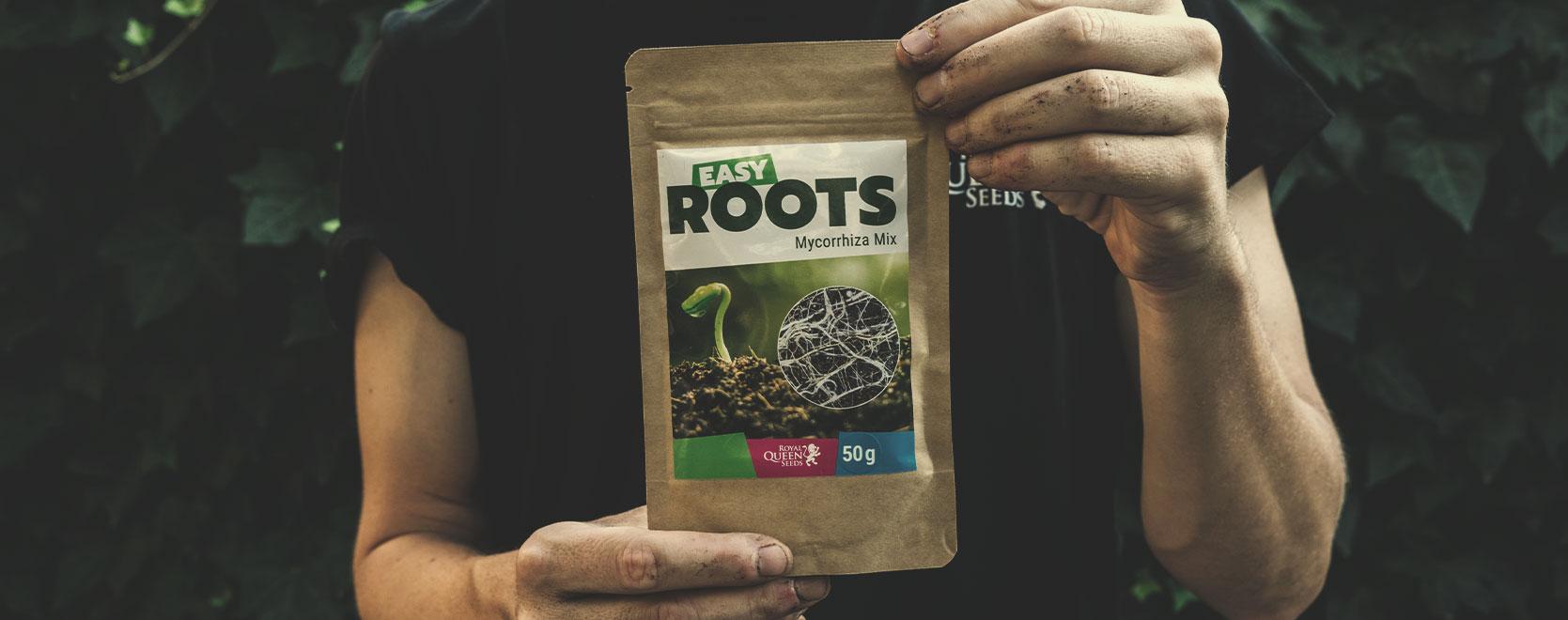 Alcuni suggerimenti per il tuo giardino o stanza di coltivazione di cannabis terapeutica