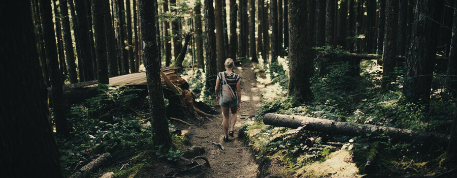 Escursionismo Cannabis Sport