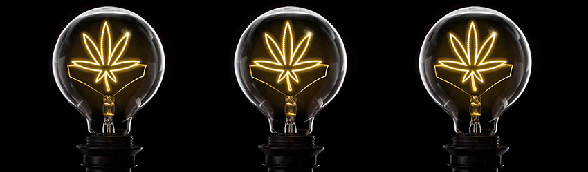 Cannabis Lighting