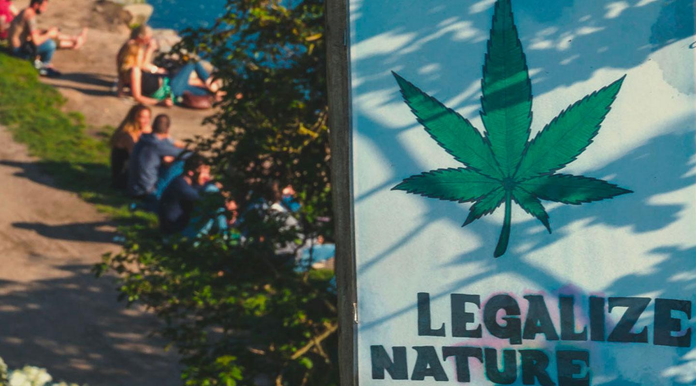 Il complesso status giuridico della cannabis