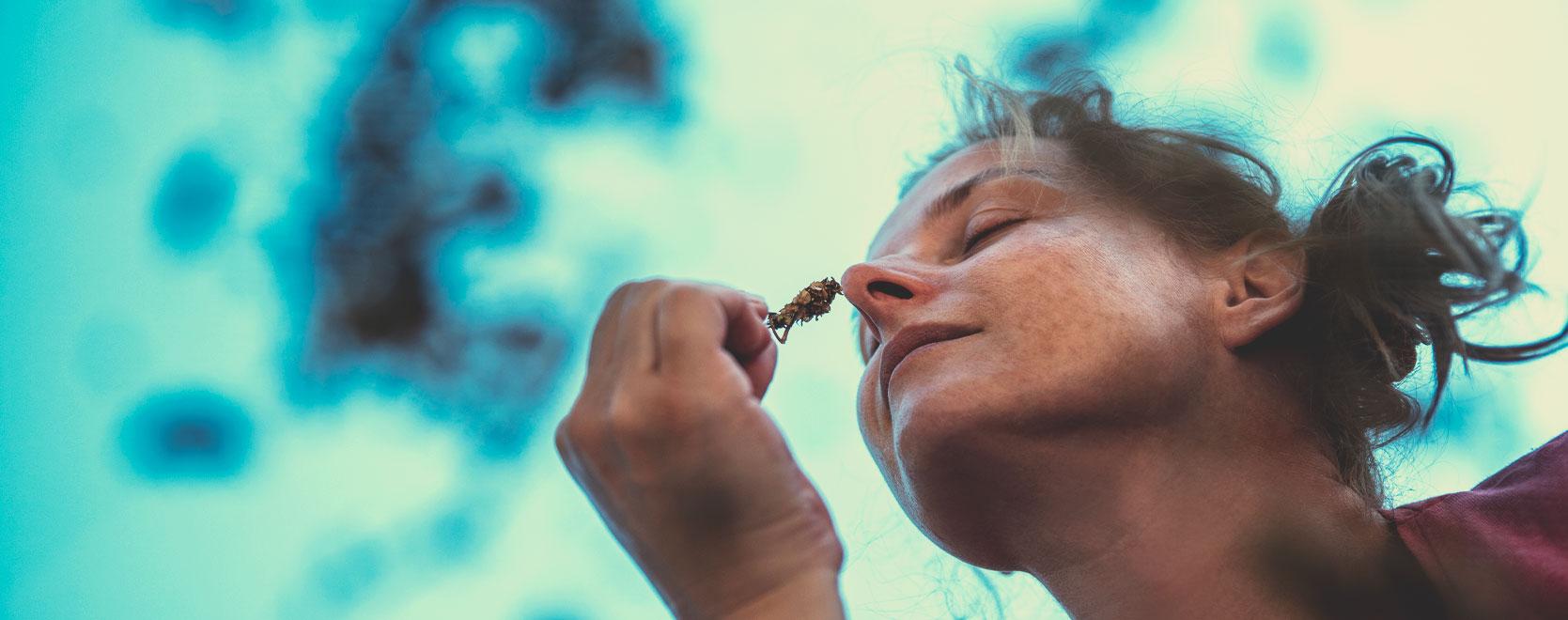 La cannabis può aiutare le persone ad affrontare l'ansia, lo stress, a perdere peso e a smettere di bere alcolici?