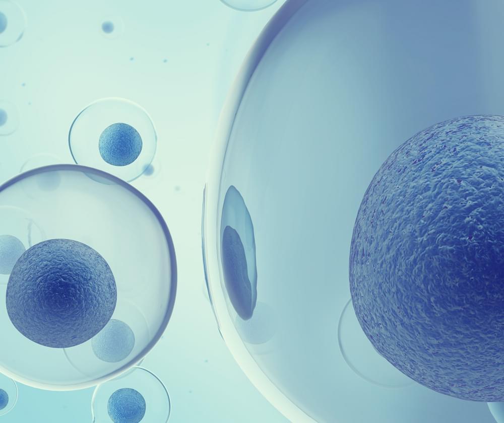MRSA cannabis infezione batterica resistenza agli antibiotici