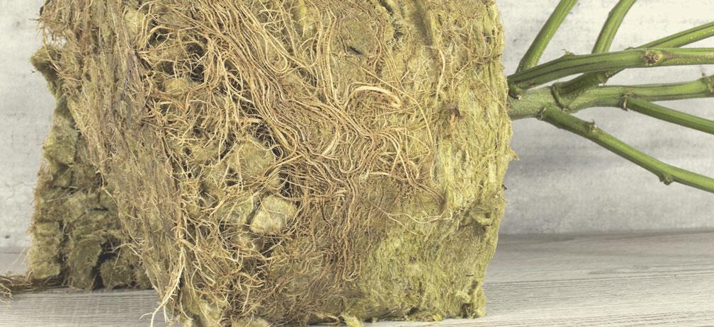 La lana di roccia è compostabile?