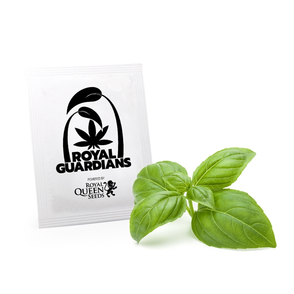 buy Sweet Basil Royal Guardians online