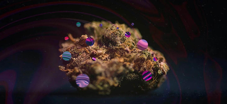 Comprendere la composizione chimica della cannabis