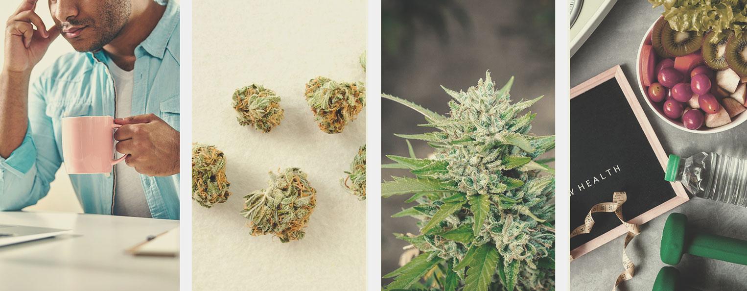 Come smettere di fumare erba o ridurre il consumo di cannabis