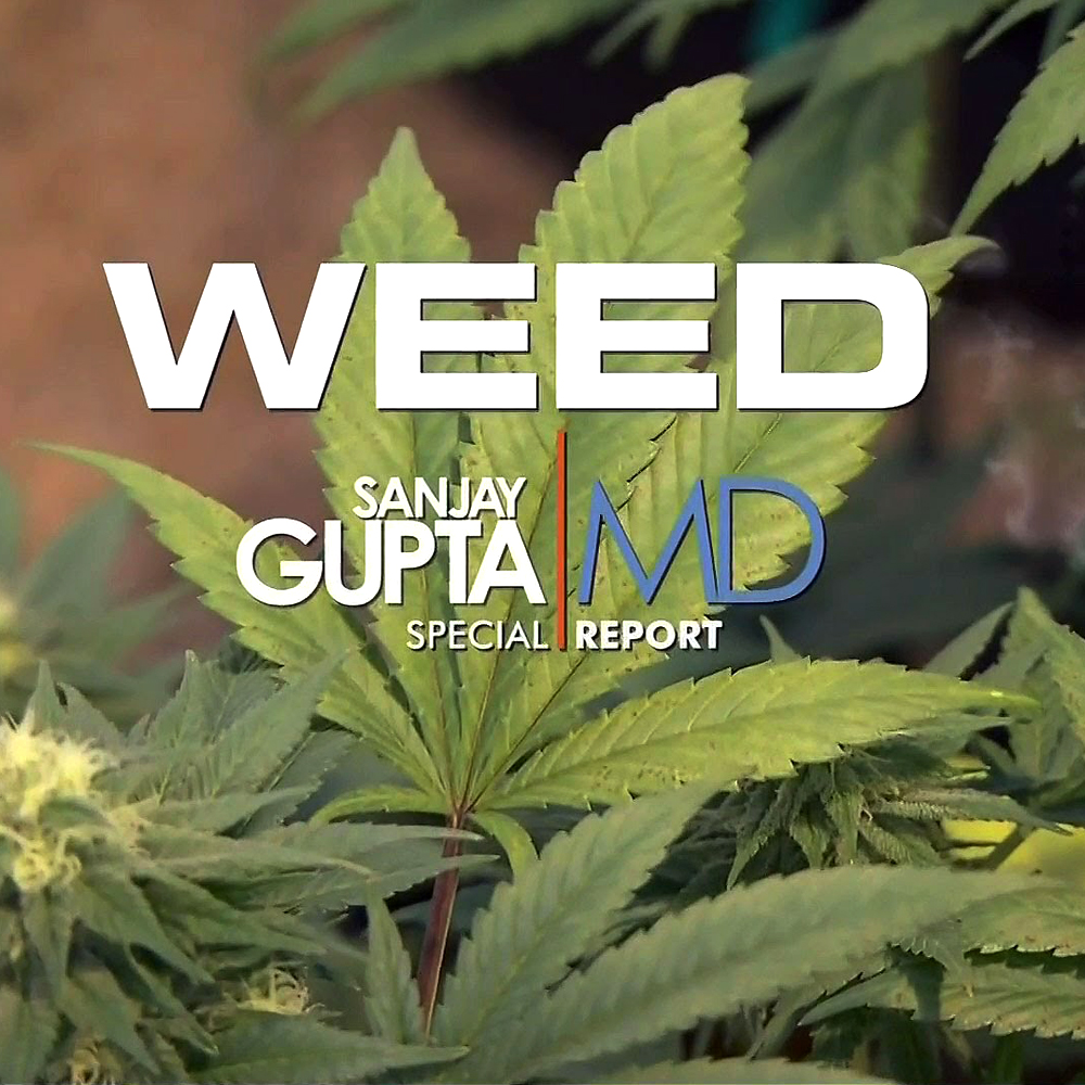 weed documentari moderne