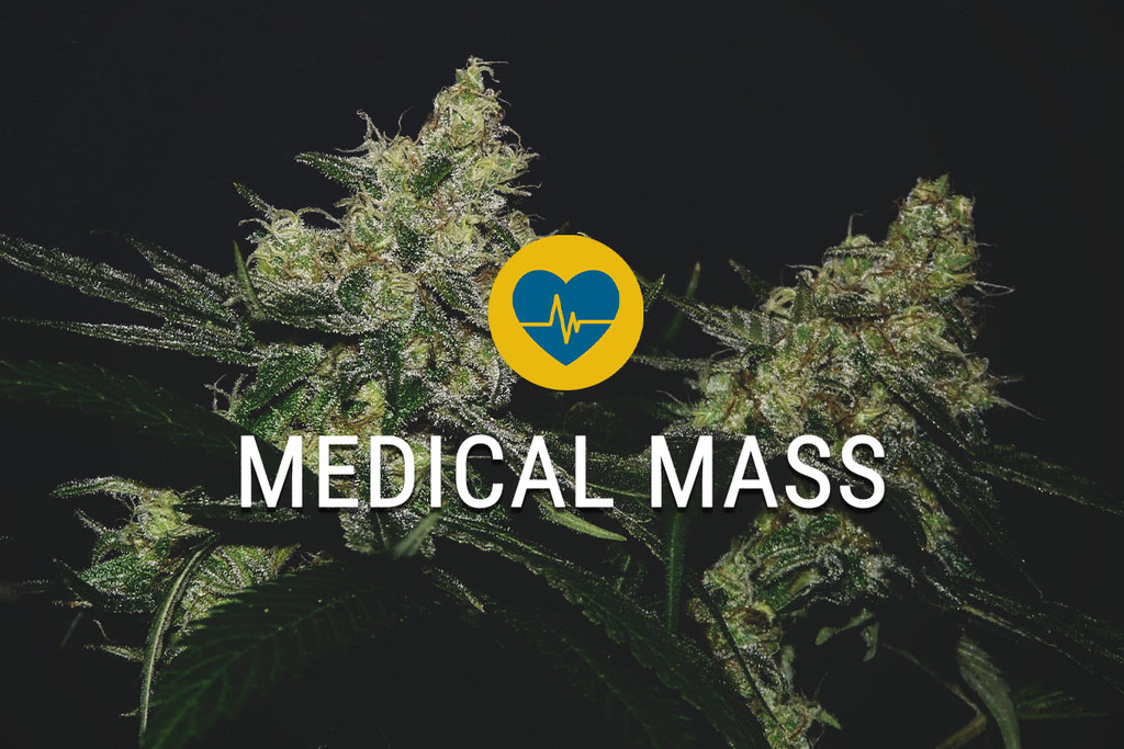 Semi di cannabis terapeutica Medical Mass