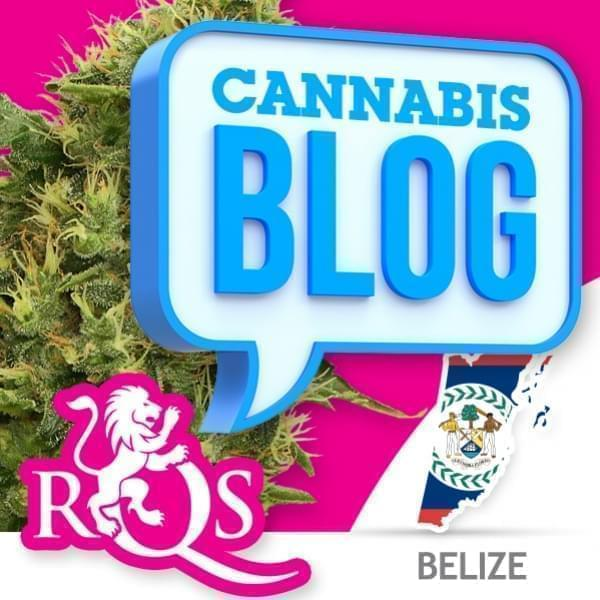 Cannabis in Belize