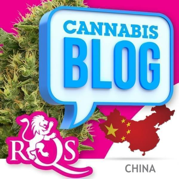 La cannabis in Cina