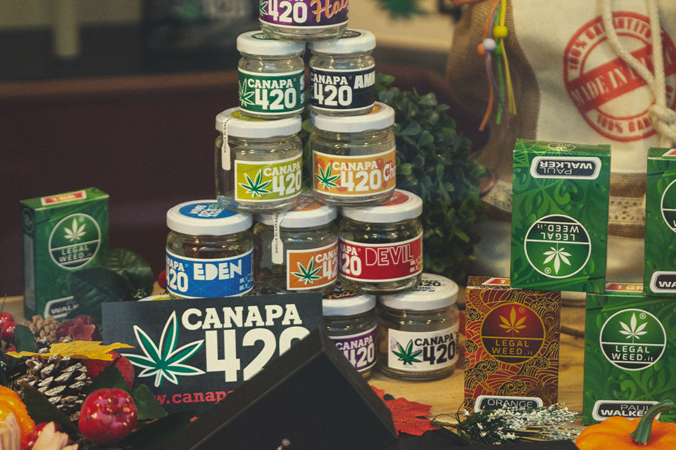 Cannabis Medica In Italia