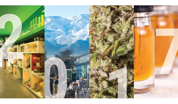 2017, A Year In Weed